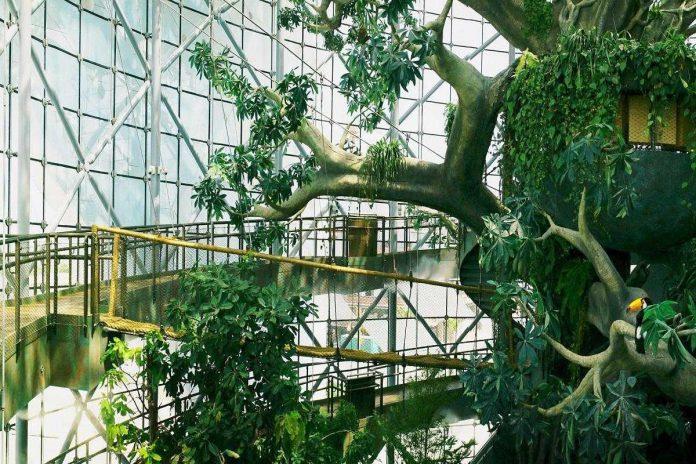 The Green Planet Biodome Dubai